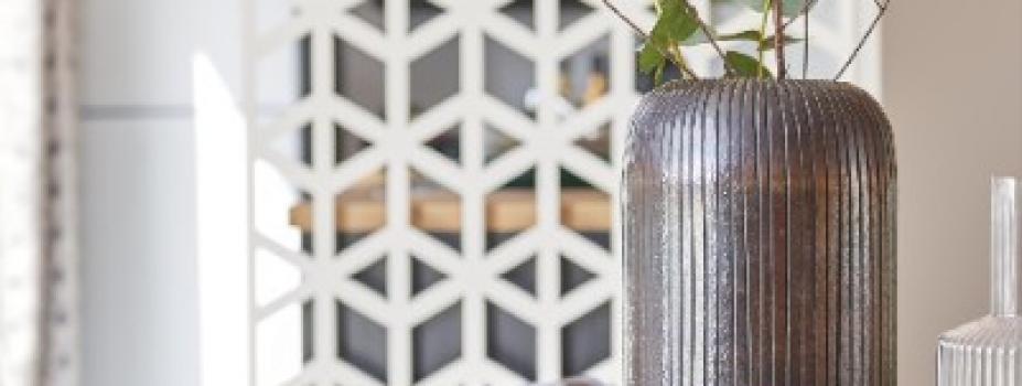 Mobil-Home neuf collection 2020 de la marque  LOUISIANE de la gamme VACANCES, GRAND LARGE 2